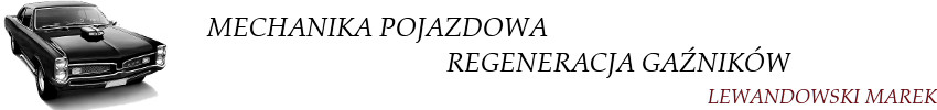 Regeneracja gaźników - Poznań